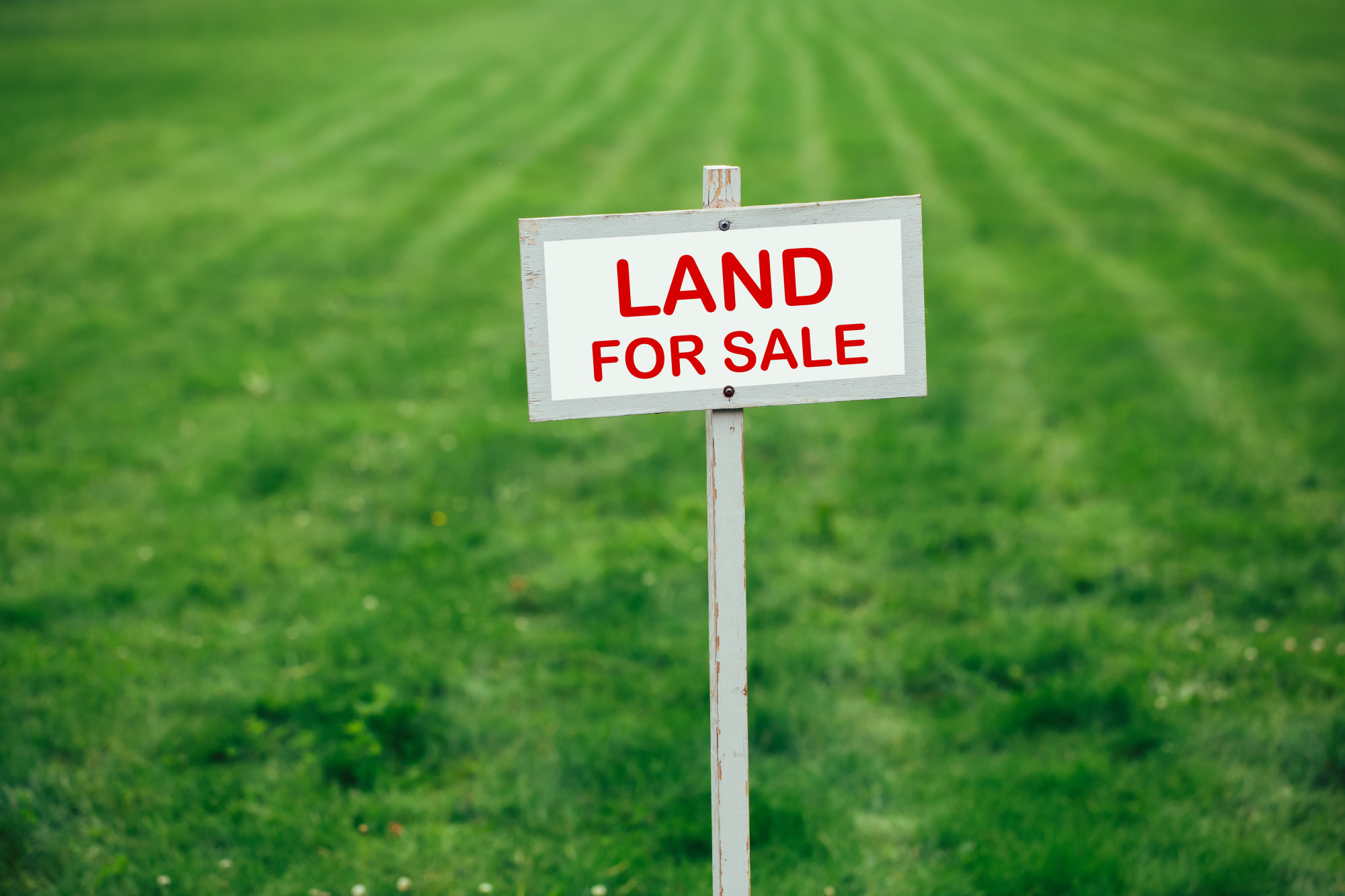 best time to sell land